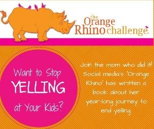 "WCASD Preschool Parents Group Presents ""Orange Rhino"""