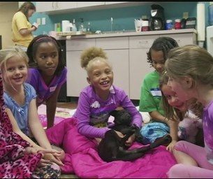 Critter Cinema at the Louisiana SPCA