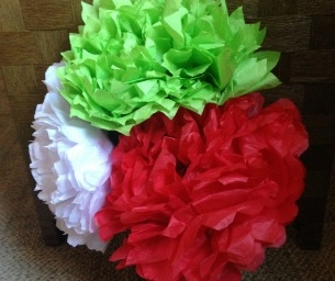 Mexican Tissue Paper Flowers