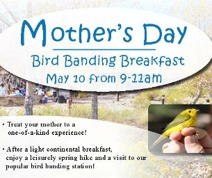 Mother's Day Bird Banding Breakfast at The Audubon Nature Center