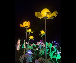 Event: LIGHTSCAPES 2015 Returns to Hudson Valley