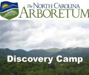 NC Arboretum's Discovery Camp Celebrates 10 Years