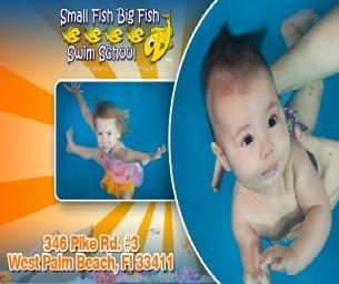 Small Fish Big Fish Swim School