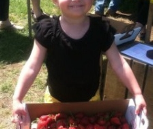 It's Almost Strawberry Pickin' Time