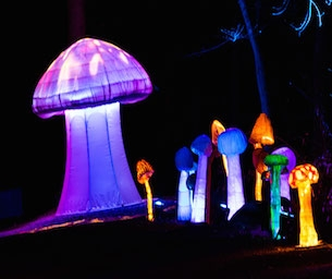LIGHTSCAPES returns to the Hudson Valley May 1