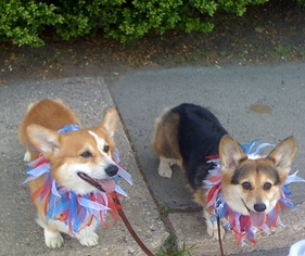 Memorial Day Fun Runs, Parades & Celebrations