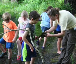 Summer Nature Programs For Kids at White Memorial Conservation Center!