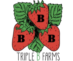 Triple B Farms Strawberry Festival!