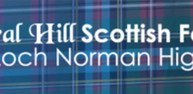 Rural Hill Scottish Festival