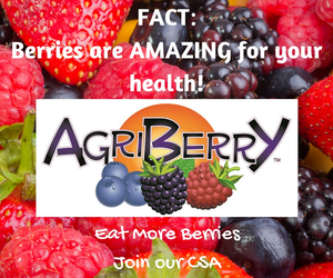 Agriberry2015