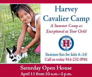Harvey Camp 2015