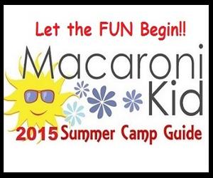 2015 Camp Dir