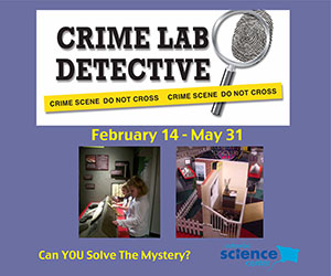 CSC_CrimeLab