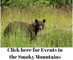 Smoky Mountains Events