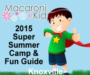 2015 Summer Camp and Fun Guide