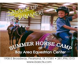 Bay Area Equestrian