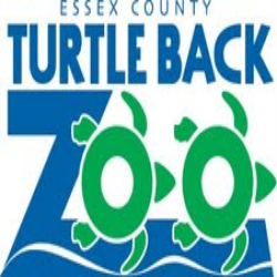 turtlebackzoo