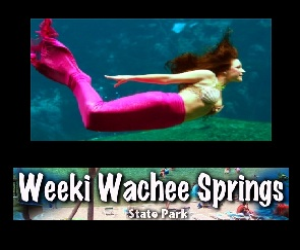 Weekie Wachee