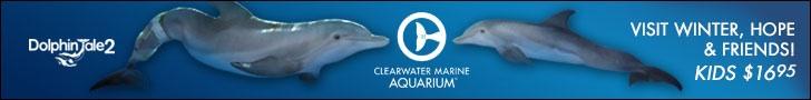 Clearwater Marine Center