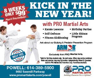 PRO Martial Arts (3)