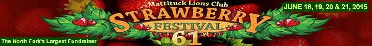 Strawberry Festival 2015!