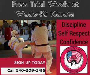 Wado-Ki Karate