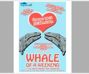 whale of a weekend