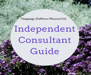 Independent Consultants Guide