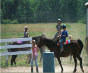 Blue Ribbon Horse Farm Camp