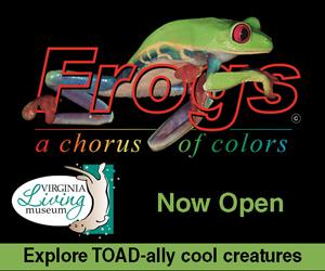 VLM Frogs Now Open