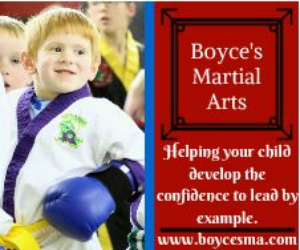 Boyce's Martial Arts